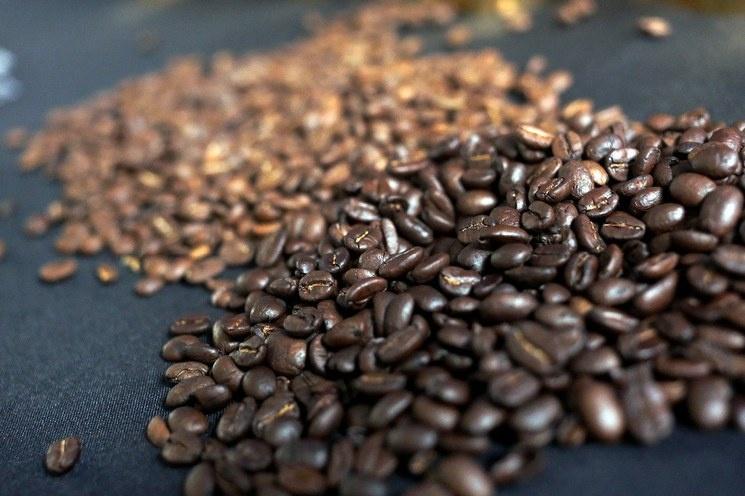 Se disparan precios del café a su mayor nivel en 6 años